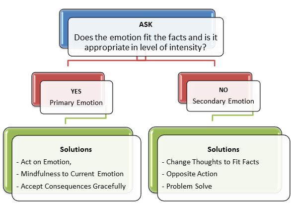 DBT Skills Working with Primary Secondary Emotions – Emotional Regulation Worksheets